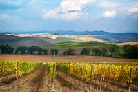 Italy---0007.jpg