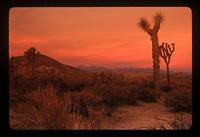 National-Parks---0031.jpg